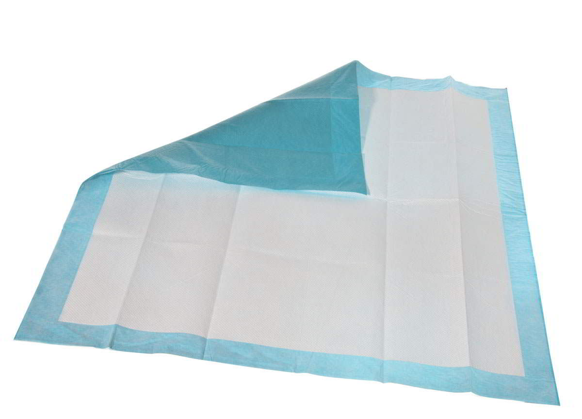 Extrasorbs Cloth-like Disposable DryPads